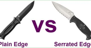 Plain Edge vs Serrated Edge Knife