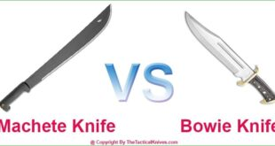 Machete vs Bowie Knife
